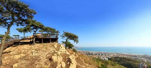 在山海间漫步 青岛新添的这些风景线超带感!